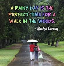 best rainy day quotes ideas rainy day poem best 25 rainy day quotes ideas rainy day poem simple life quotes and introvert quotes