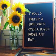 Pin Von Alexandra Braun Auf Sonnenblumen Sonnenblumen Sprüche Und