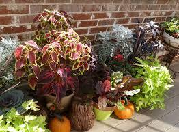 Fall Plants Autumn Garden Container Gardening  Bombay OutdoorsContainer Garden Ideas For Fall