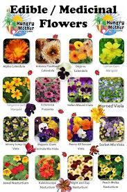 What Flowers Are Edible Garden Design Ideas