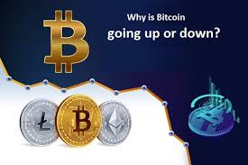 Everest is more dangerous going up, because once your leaving summit you have to be careful because you climbing down on rocks. Why Is Bitcoin Going Up Or Down Quicksquaddesk