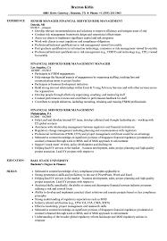 Ernst And Young Resume Sample Financial Services Risk Management Resume Samples Velvet Jobs 17