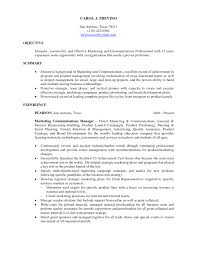 Career Summary As Alternative To Resume Objectives Resume Objectiv
