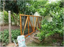 Am Nagement Du Jardin Potager Tha Lande Le Blog De Khon Kaen