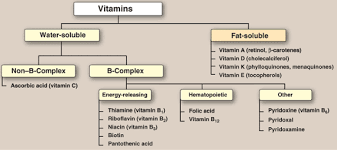 Vitamin Classification Chart Vitamins Uses For General Knowledge And General Awareness