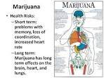 what are the health risks of marijuana