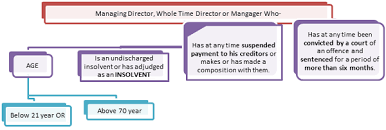 Managing Whole Time Director Under Companies Act 2013