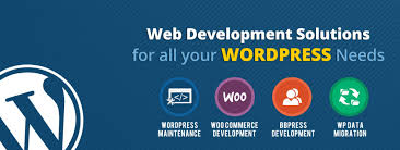 Wordpress Design India Seo Web Mobile Application Development India Best Web