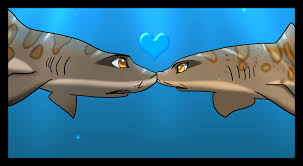 shark love by zavraan on  shark love by zavraan