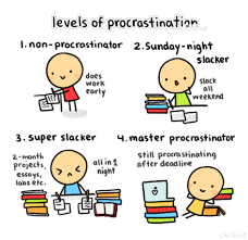 school trip essay the procrastination levels of procrastination funny cute test tumblr study school