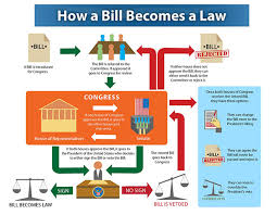 Bill To Law Chart How A Bill Becomes A Law Flowchart On Behance