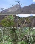 imagem de Mimoso do Sul Espírito Santo n-15