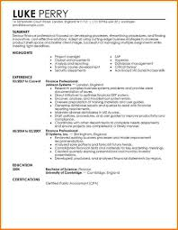 9 financial resume sample financial statement form financial resume 2 financial resume sample car pictures