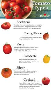 Tomato Types Find The Perfect Tomato Type For Your Garden