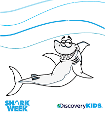 Small Picture Sharks Discovery Kids