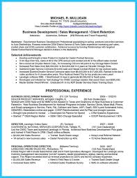 Sample Resume For Car Salesman Impressive Nowadays We Can Ask Someone To Make Our Car Salesman Resume And Then
