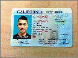 Fake Best Templates California Id Template Free Malcontentmanatee Download Of Erieairfair
