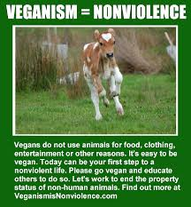 veganism nonviolence veganism is nonviolence advertisements