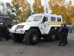 den rabotnikov lesa  【ロシア製】日本で余り見ない珍しい車【希少車