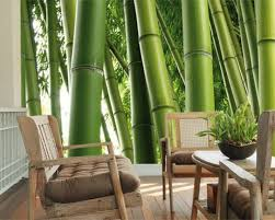 Wallpaper For Small Living Rooms Home Interiorsmall Living Room Decor With Stunning Green Bamboo