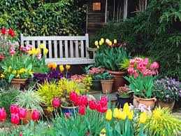 1452644626570 to spring gardening ideas to designing with spring bulbs