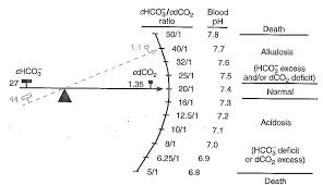 Henderson Hasselbalch Biochemistry Class Notes Henderson Hasselbalch Equation