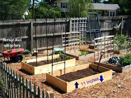 best wood for raised beds boxed vegetable garden ideas beautiful organic red cedar be