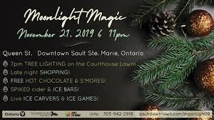 Moonlight Tree Lighting Moonlight Magic 2019