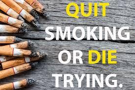 Anti Smoking Quotes Custom Motivation To Quit Smoking Inspirational Cool Anti Smoking Quotes