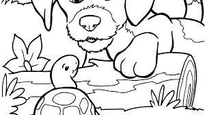 Kleurplaat Hond En Schildpad Kleurplaatjenl