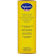Kids Cold And Mucus Day And Night Value Pack By Hylands 4kids Natural Common Cold Symptom Relief 8 Fl Oz Packaging May Vary