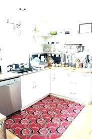 best rug for en sink area large rugs inspiring snapshot ideas kitchen throw washable hard