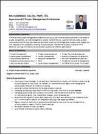resume writing services usa help professional definition  resume writing services usa professional critical essay ghostwriters service cheap 12
