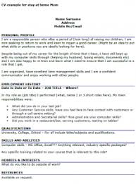 Resume Examples SAMPLE RESTAURANT RESUMES   Restaurant Functional Resume Sample     How To Write