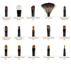 makeup brushes 1 diffe makeup looks names daily