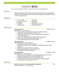 Hospitality Objective Resume Samples summary of objectives resume samples Essay writing online 100100 66