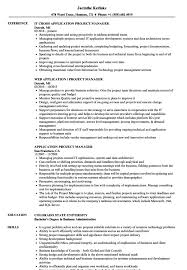 Business Development Manager Resume Samples Application Project Manager Resume Samples Velvet Jobs Web 49