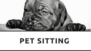 Pet Service Price List For The North West Of England