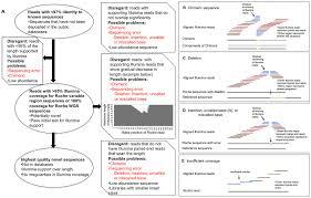 Illumina Sequencing Flow Chart Irregularities In Illumina Coverage Used To Identify