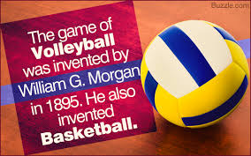 Image result for pics of volleyballs