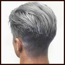 Image result for grey hair pics for men