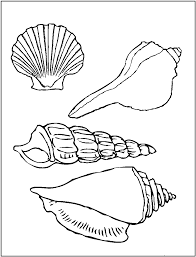 Small Picture Printable Pictures of Sea Shells Printable Seashell Coloring