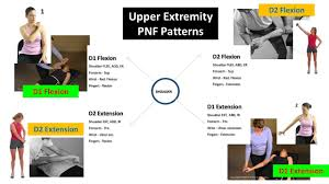 Pnf Patterns Upper Extremity