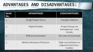 Benefits Of Organizational Chart Organizational Chart Advantage And Limitation In Management