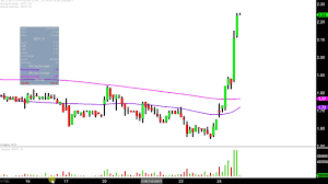 Mgti Stock Chart Mgt Capital Investments Inc Mgti Stock Chart Technical Analysis For 11 24 17