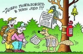 Прикольные анекдоты про льва Мир анекдотов Лучшие анекдоты про лес