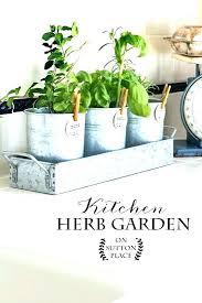 window herb garden kit kitchen herb garden kit club in indoors herb garden kit