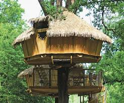 Small tree house blueprints Inside Small Tree House Plans Awesome Stylish Tree House Ideas Best House Design How To Paint Alexander Gruenewald Small Tree House Plans Awesome Stylish Tree House Ideas Best House