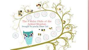 The 9 Major Phyla Of The Animal Kingdom By Lynne Gianelos On