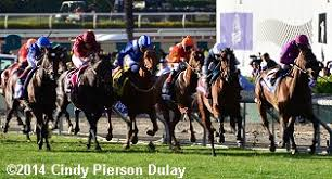2014 Breeders Cup Charts 2014 Breeders Cup Mile Results